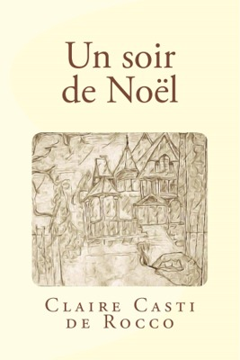 le roman contemporain Un soir de Noël